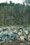 Northfield Quarry, Dunipace