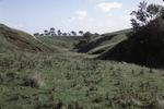 Myot Hill, Denny