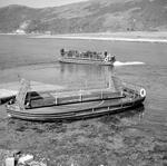 Ferry, Ballachulish