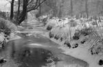 """Snow. Polmont Glen. Frozen burn"""