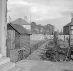 Garden, Jackson Avenue, Grangemouth