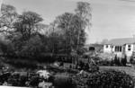 Auchincloch Mill pond