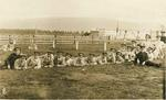 Queen's Own Glasgow Yeomanry Camp 1914, Haining, Falkirk
