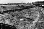 Grangepans.  Part of proposed 38 acre industrial site
