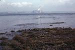 View of salt marsh, Skinflats