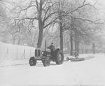 Callendar Park, in snow.