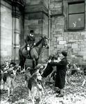 Huntsman and hounds at Callendar House
