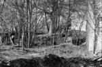 Auchincloch Mill ruins