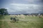 Hay harvesting, Grangemouth