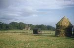 Ballybreich Castle