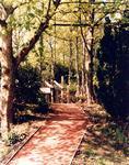 Woodland path, South Bantaskine Estate