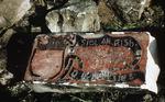 Broken lintel with coat of arms of Sir D P Menzies, Pleanmill