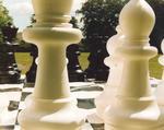 Dollar Park giant chess set