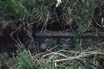 Remains of Carronshore dock gate in undergrowth