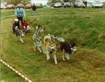 Muiravonside Country Fair
