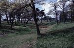 Roughcastle Fort