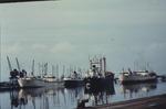 Ships in Grangemouth Docks
