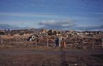 Demolition of Glynwed factory, Larbert
