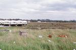 Carronshore Caravans