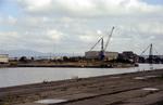 Junction Dock, Grangemouth