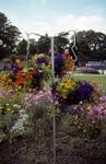 Frame for hanging baskets; mixed flowers in Dollar Park