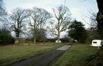 Carriden estate woodland