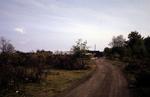 Carriden Estate foreshore