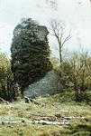 Bruce's Tower, Plean