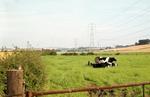Fields, near Laurieston