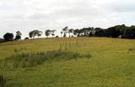 Fields near Polmont