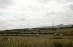 Gilston, looking east